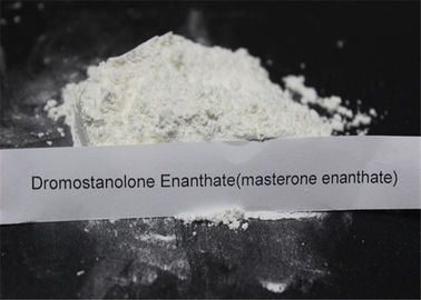 Drostanolone Steroid